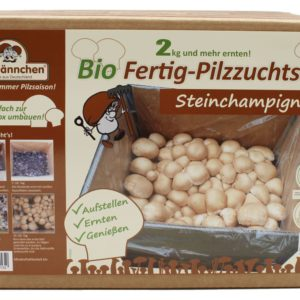 Bio Steinchampignon-Pilzzuchtset