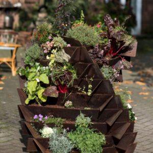 Ackerwinde Baustahl Bausatz Groß bepflanzt