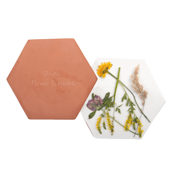 Blumen- und Kräuterpresse Mikrowelle