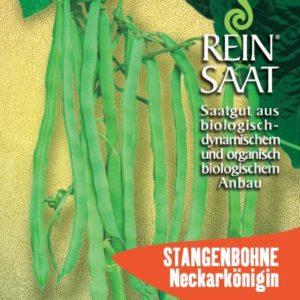 Bohne Stangenbohne Neckarkönigin