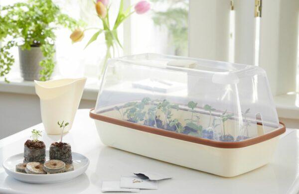 Gewächshaus für Jungpflanzen