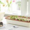 Anzuchtschale für Jungpflanzen