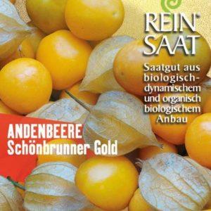 """Andenbeere """"Schönbrunner Gold"""""""