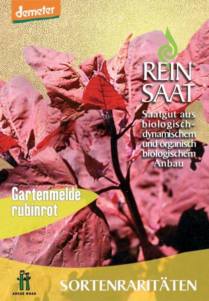 Gartenmelde rubinrot