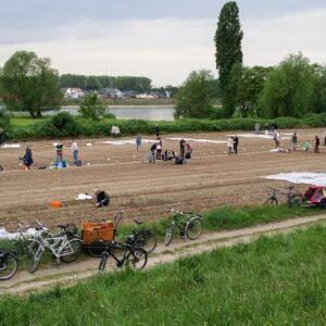 Garten mieten - Düsseldorf Volmerswerth