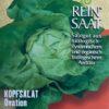"""Salat Kopfsalat """"Ovation"""""""