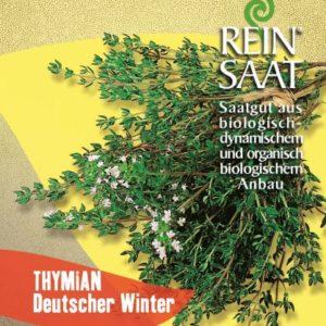 """Thymian """"Deutscher Winter"""""""