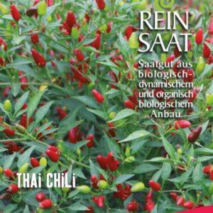 """Chili """"Thai Chili"""""""