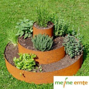 Pflanzenpyramiden klein