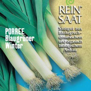 Porre Blaugrüner Winter