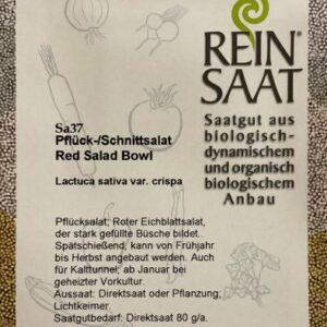Red Salat Bowl