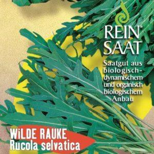 Rucola selvatica - Wilde Rauke