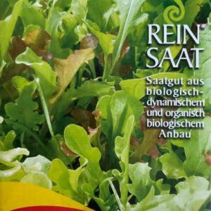 "Salat ""Misticanza"""
