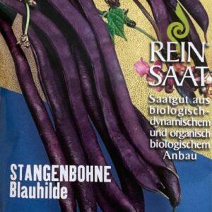 Bohne Stangenbohne Blauhilde