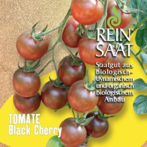 "Tomate ""Black Cherry"""