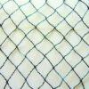 Vogelschutznetz Maschenweite 30 mm