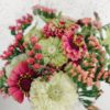 Wild Bouquets Zinnia Collection