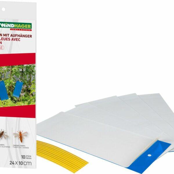 Blautafeln gegen Schädlinge