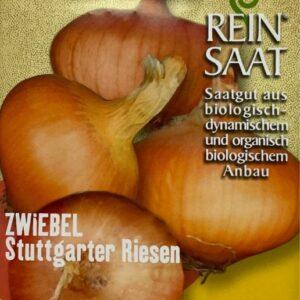 """Zwiebel """"Stuttgarter Riesen"""""""