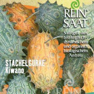 Stachelgurke
