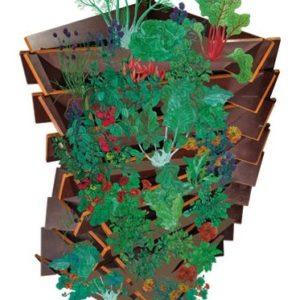 Ackerwinde Illustration Multiplex Holz