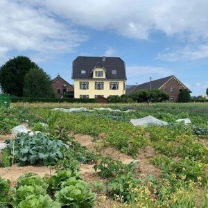Gemüsegarten mieten in Krefeld